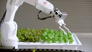 Robots Agricultores